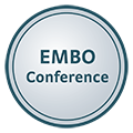 EMBO Workshop