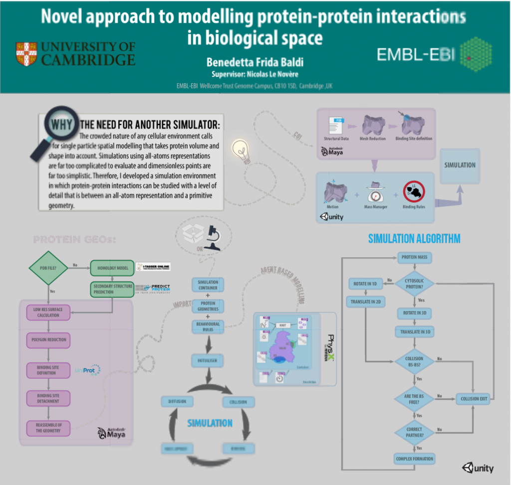 Novel approach to modelling protein-protein interactions in biological space