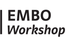 EMBO Workshops